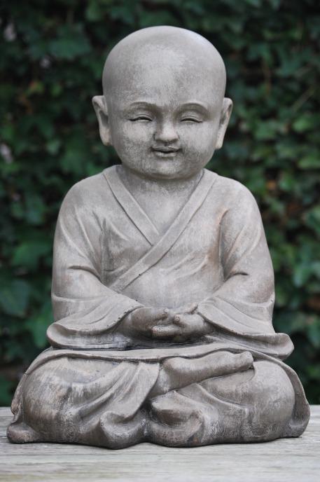 buddhaboy216411