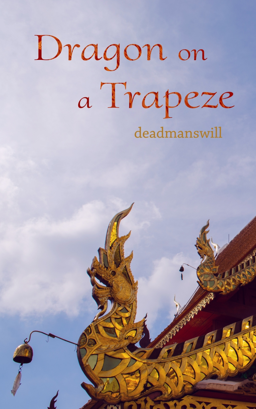 dragon on a trapeze cover