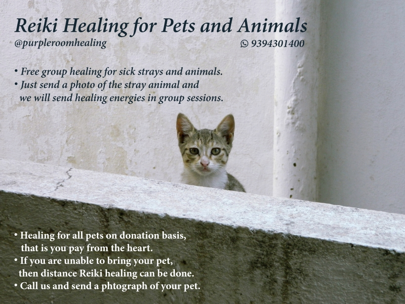 Reiki healing for Pets and Animals full poster 1